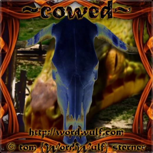 ~cowed~ X