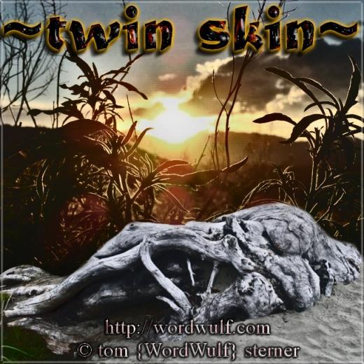 ~twin skin~ X