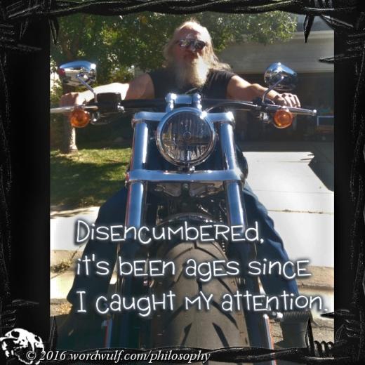 11-2-2016-disencumbered-adage