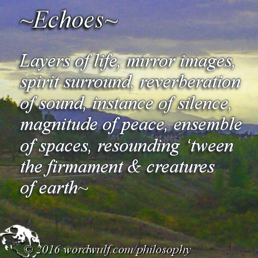 11-9-2016-echoes