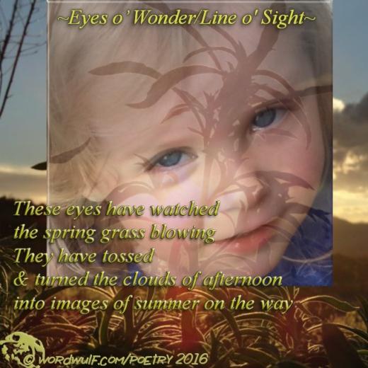 12-6-2016-eyes-o-wonder