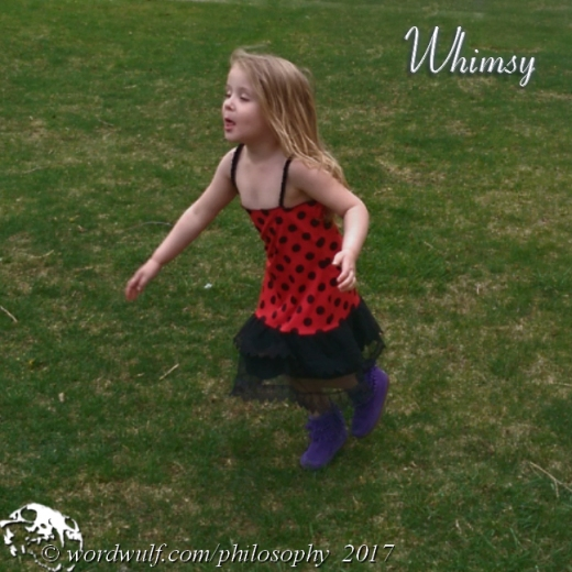 1-29-2017-whimsy-t