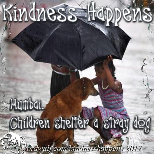 Kindness - 1 X
