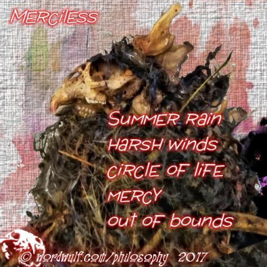 ~Merciless~ X 8-13-2017
