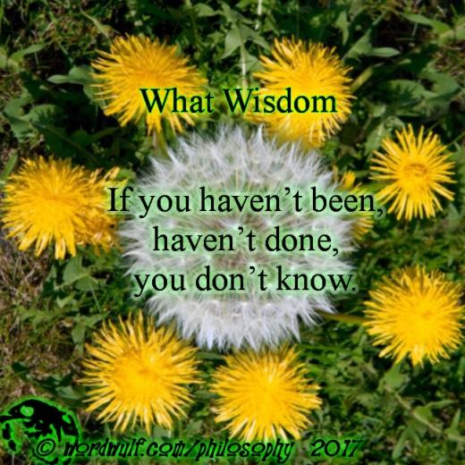 ~What Wisdom~ X 8-13-2010