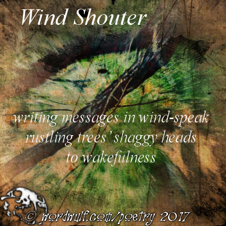 ~Wind Shouter~ X