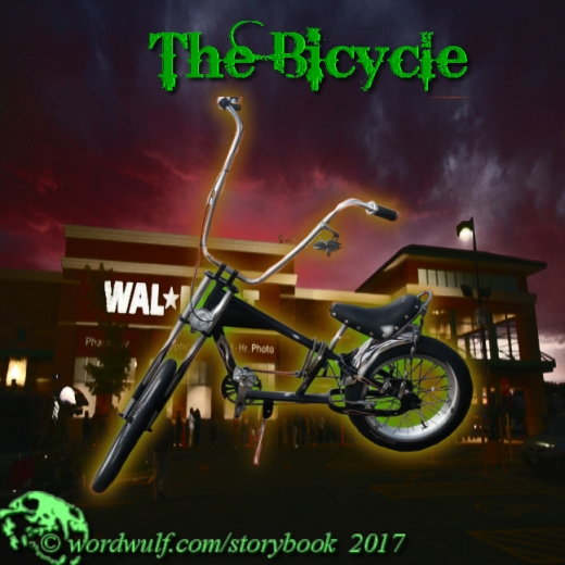 12-21-2017 - Bicycle T